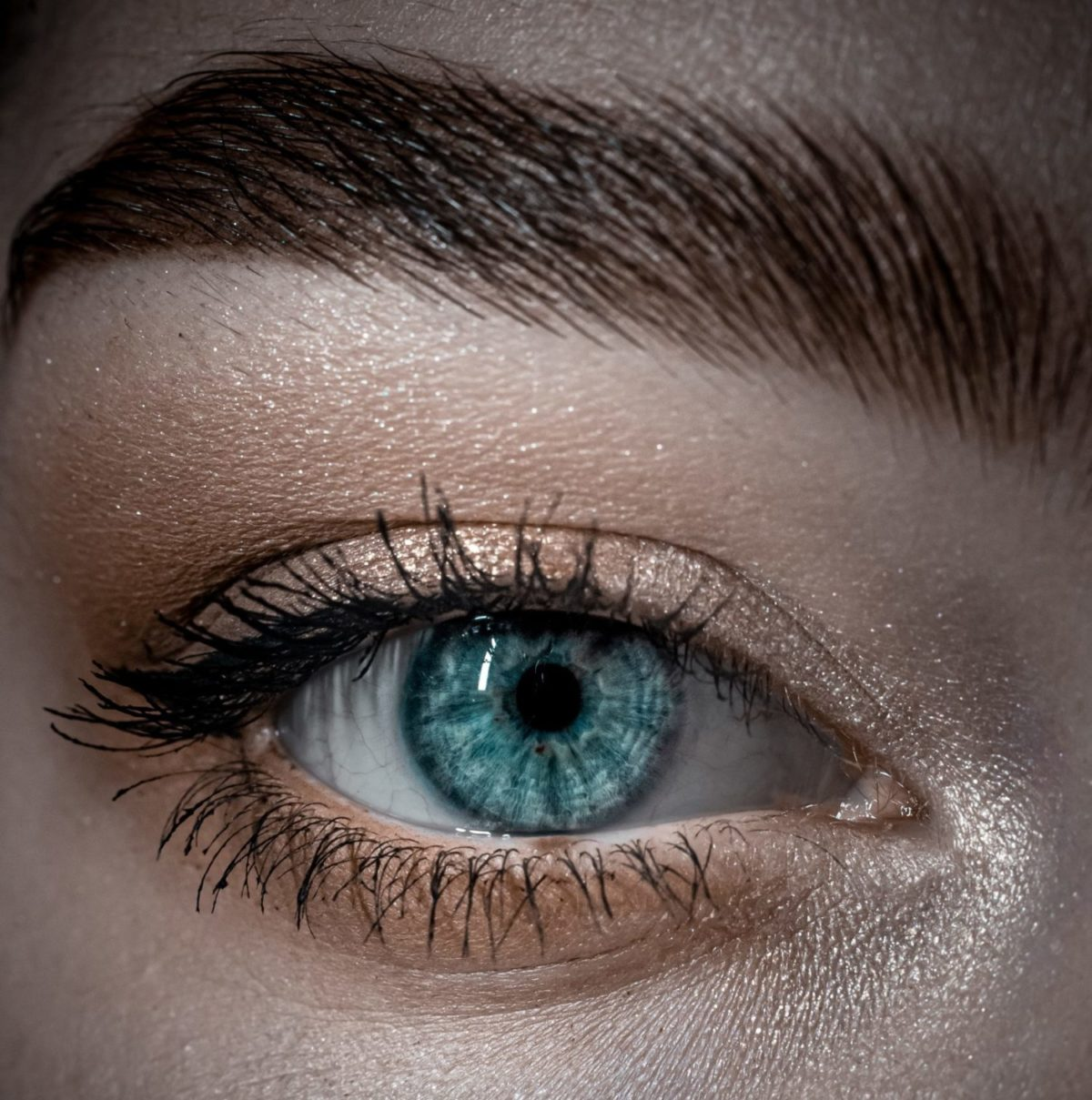 brow definition Foto: (egor-vikhrev-Z-5i0RVukdU-unsplash)